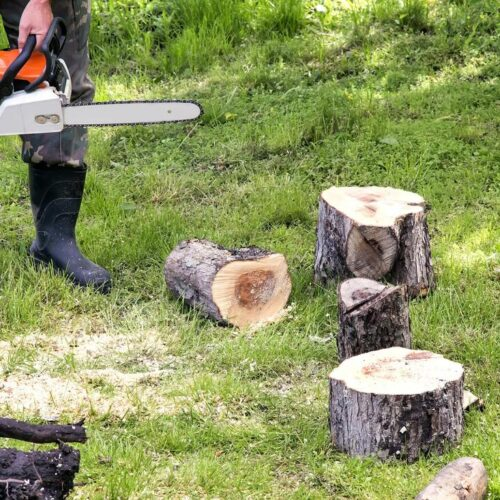 Tree Service-Pearland TX Landscape Designs & Outdoor Living Areas-We offer Landscape Design, Outdoor Patios & Pergolas, Outdoor Living Spaces, Stonescapes, Residential & Commercial Landscaping, Irrigation Installation & Repairs, Drainage Systems, Landscape Lighting, Outdoor Living Spaces, Tree Service, Lawn Service, and more.